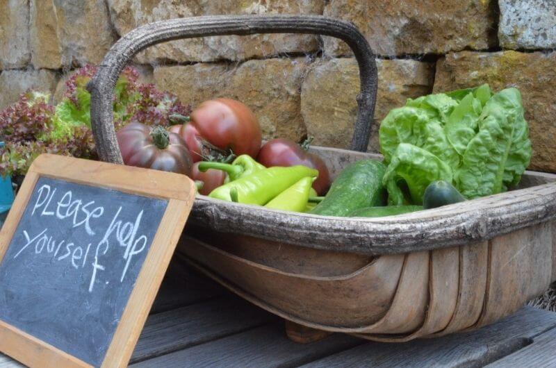 Obst-Gemüse-vom-Bauernhof-Heath-Farm-Cottages-Urlaub-Cotswolds-England-UK-Familienurlaub-mit-Kindern-nachhaltig-eco-tourism