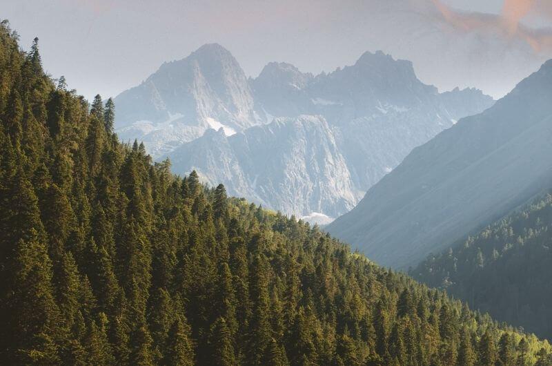 Wald-Natur-Berge-Flugzeug-CO2-Ausstoß-Emission-kompensieren-ausgleichen-Klimagas-Tipps-Vergleich-Pexels