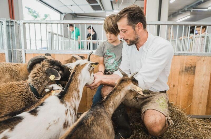 Alois-Seyrling-Sigis-Sauhaufen-Klosterbräu-Hotel-Spa-Urlaub-mit-Kind-Baby-Kleinkind-Familienfreundlich-Seefeld-Tirol-Kinderhotel-Österreich-Bauernhof-Hoftiere-Biohof-nachhaltig-Familienhote